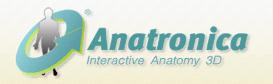 人体构造 Anatomy 3D