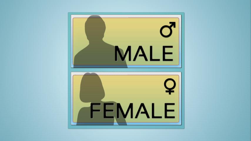 人体构造 Anatomy 3D可以选择男、女